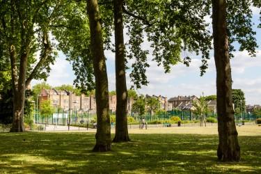 Green_park_trees